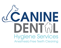 Canine Dental Hygiene Services